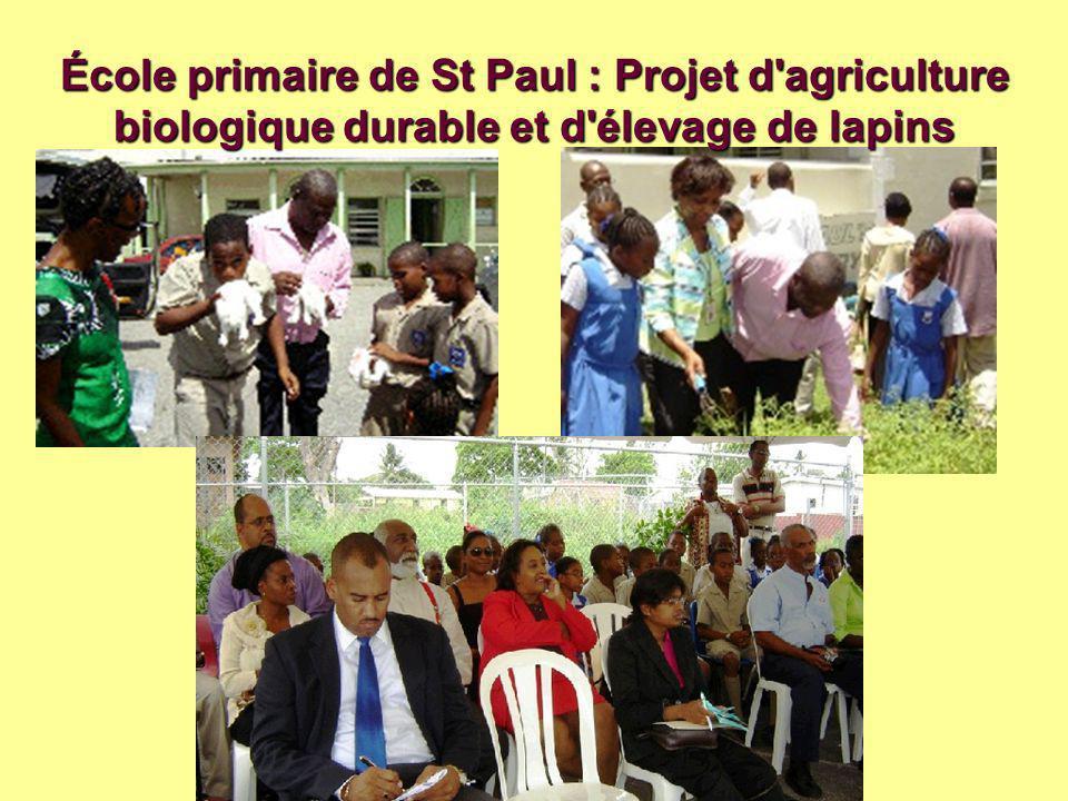 École primaire de St Paul : Projet d agriculture biologique durable et d élevage de lapins