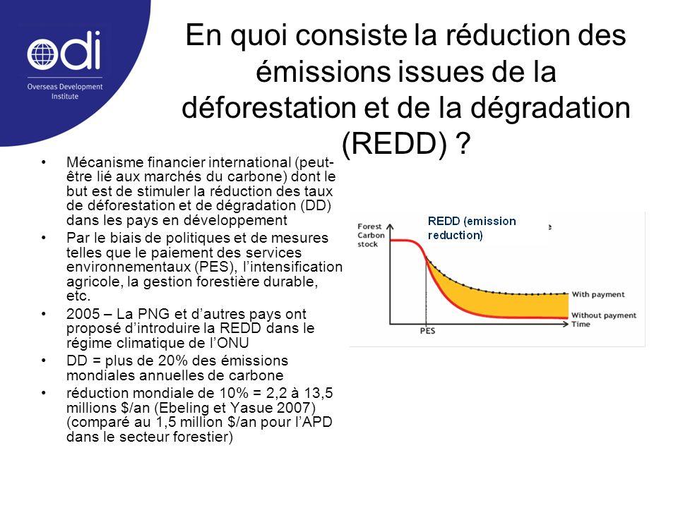 En quoi consiste la réduction des émissions issues de la déforestation et de la dégradation (REDD)