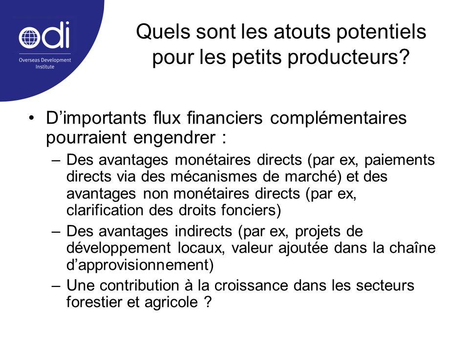 Quels sont les atouts potentiels pour les petits producteurs