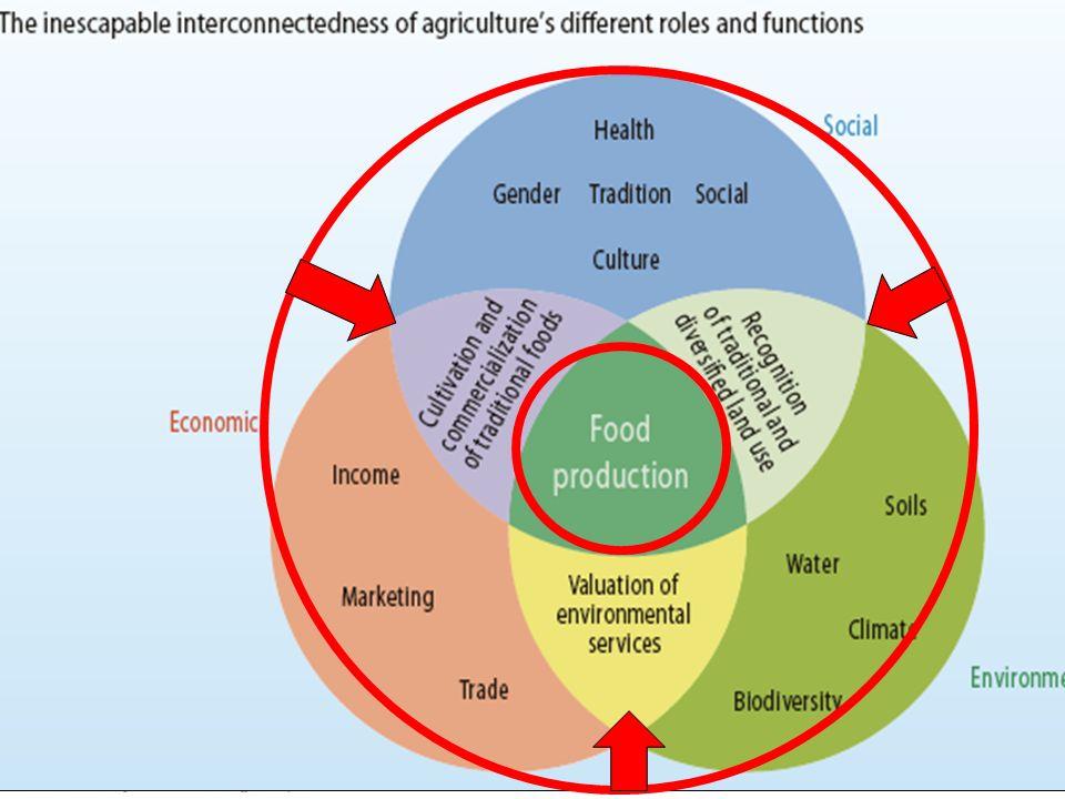 Les défis essentiels de l agriculture : la multifonctionnalité