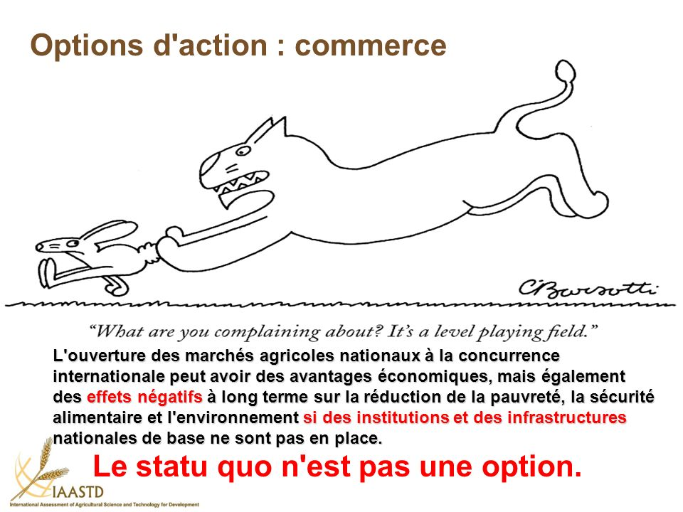 Options d action : commerce