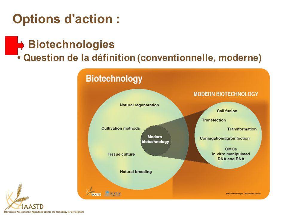 Options d action : Biotechnologies