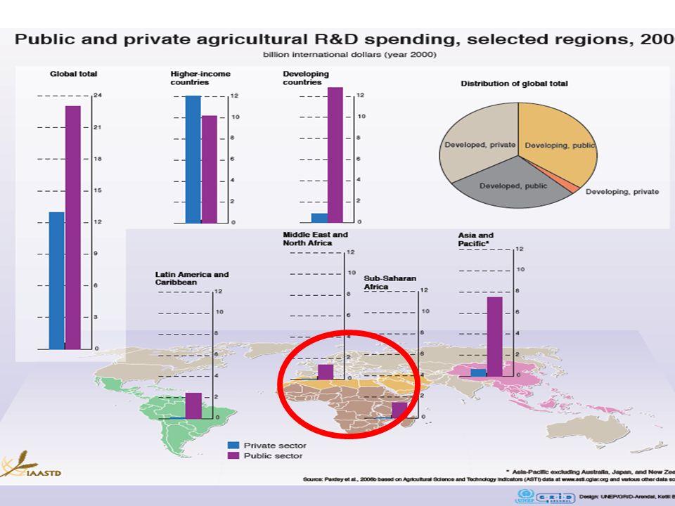 Options d action : Nouvelles politiques de sécurité alimentaire et nutritive.