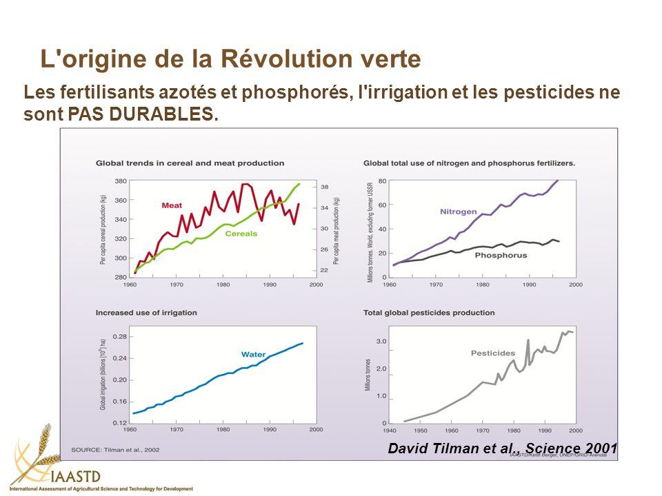 L origine de la Révolution verte