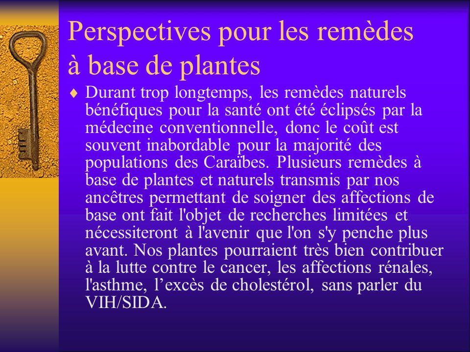 Perspectives pour les remèdes à base de plantes