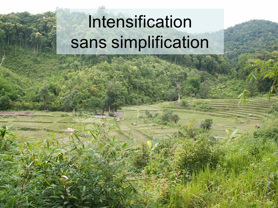 Intensification sans simplification