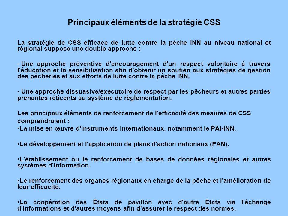 Principaux éléments de la stratégie CSS