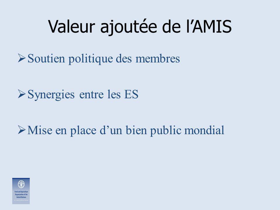 Valeur ajoutée de l'AMIS