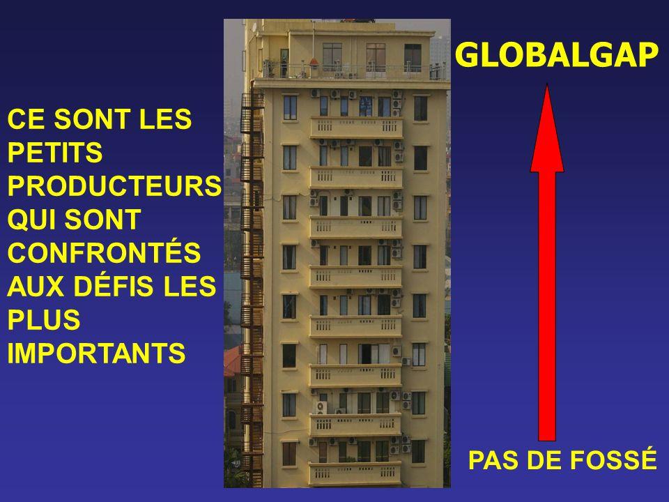 GLOBALGAP CE SONT LES PETITS PRODUCTEURS QUI SONT CONFRONTÉS AUX DÉFIS LES PLUS IMPORTANTS.