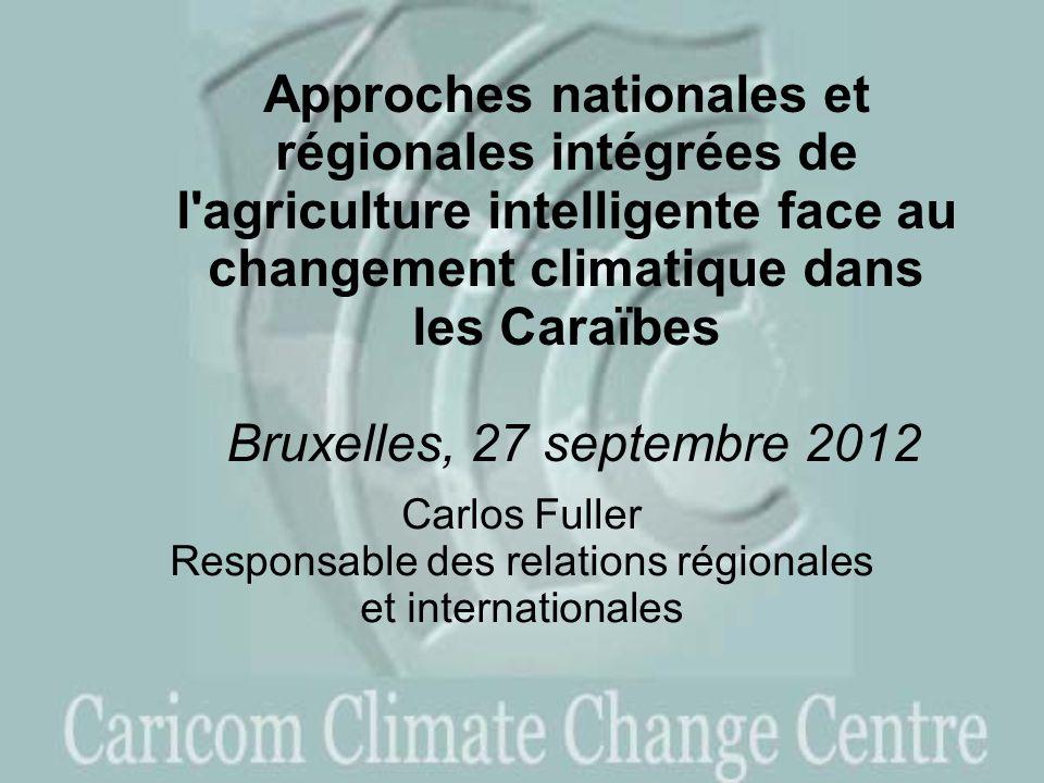 Carlos Fuller Responsable des relations régionales et internationales