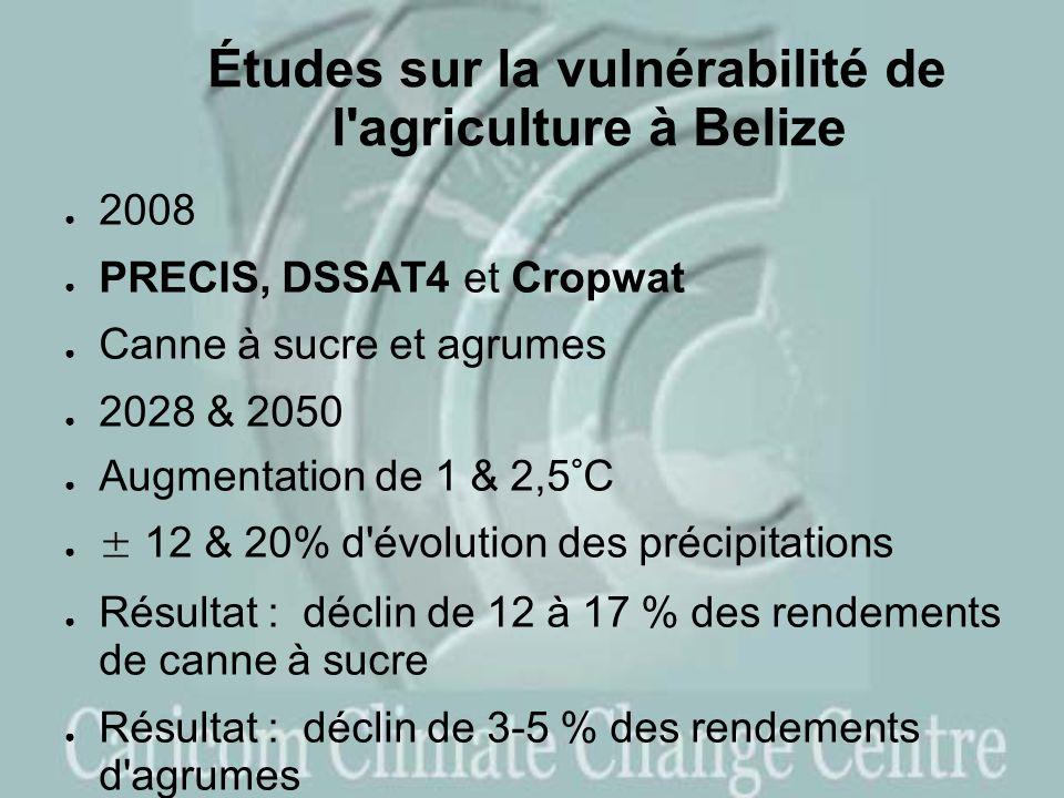 Études sur la vulnérabilité de l agriculture à Belize