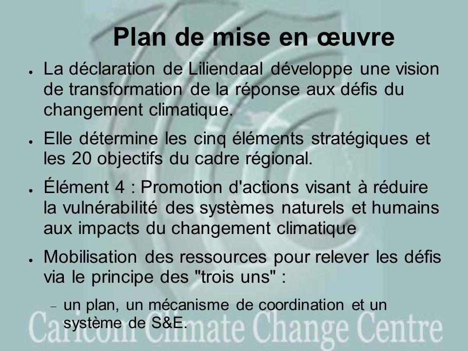 Plan de mise en œuvre La déclaration de Liliendaal développe une vision de transformation de la réponse aux défis du changement climatique.