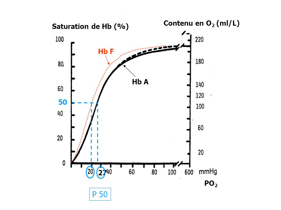 27 P 50 50 Saturation de Hb (%) Contenu en O2 (ml/L) Hb F Hb A PO2