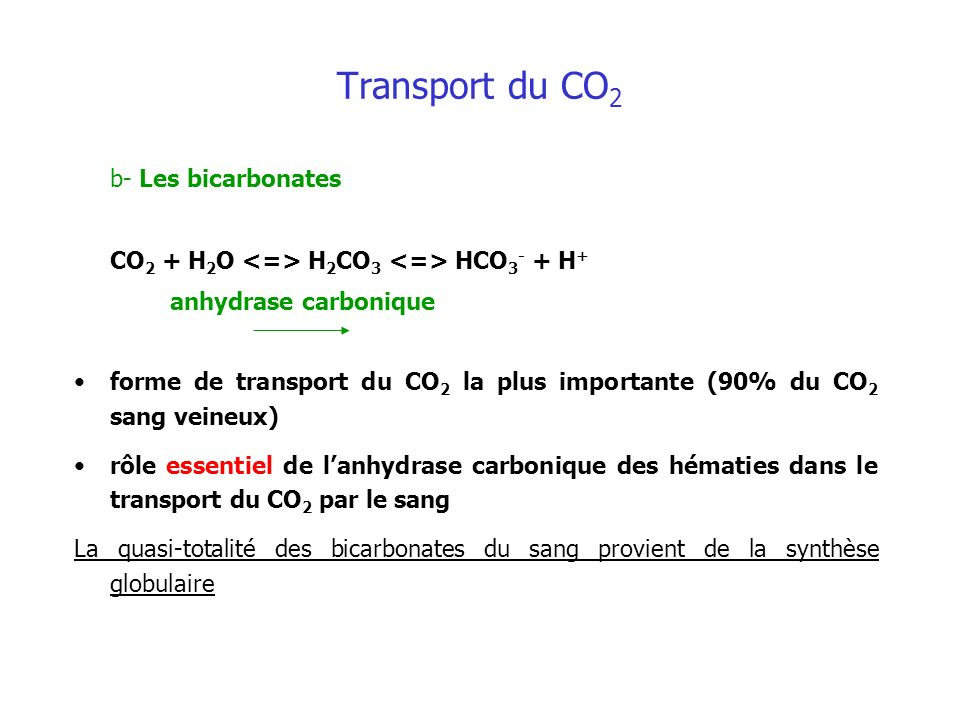 Transport du CO2 b- Les bicarbonates
