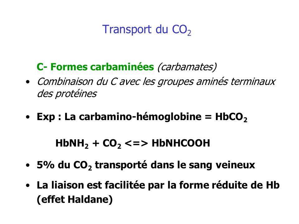 C- Formes carbaminées (carbamates)