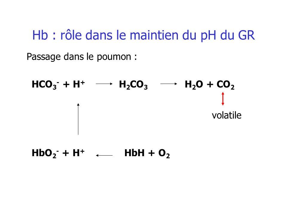 Hb : rôle dans le maintien du pH du GR