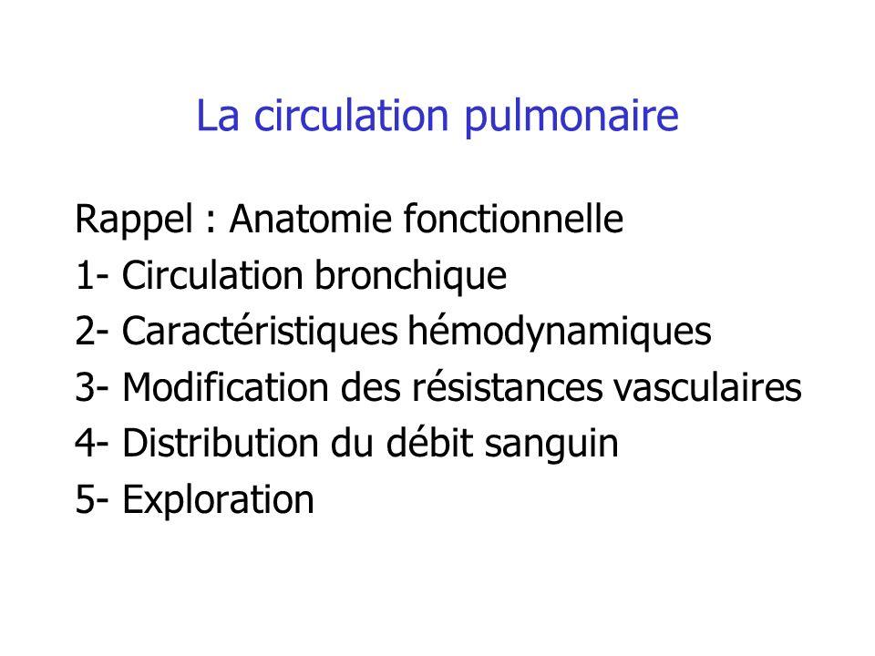 La circulation pulmonaire