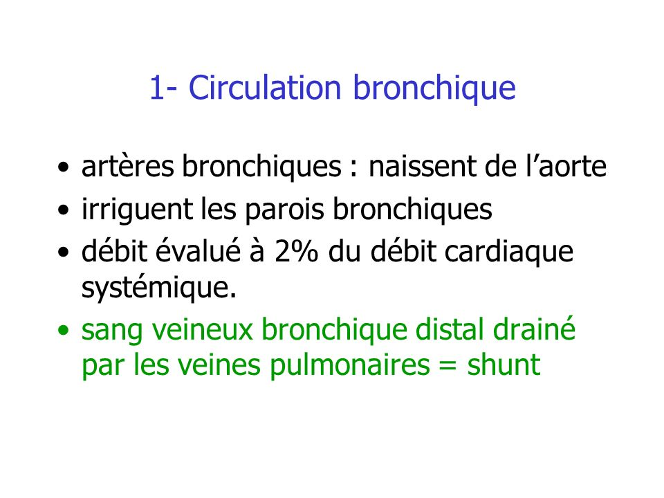 1- Circulation bronchique