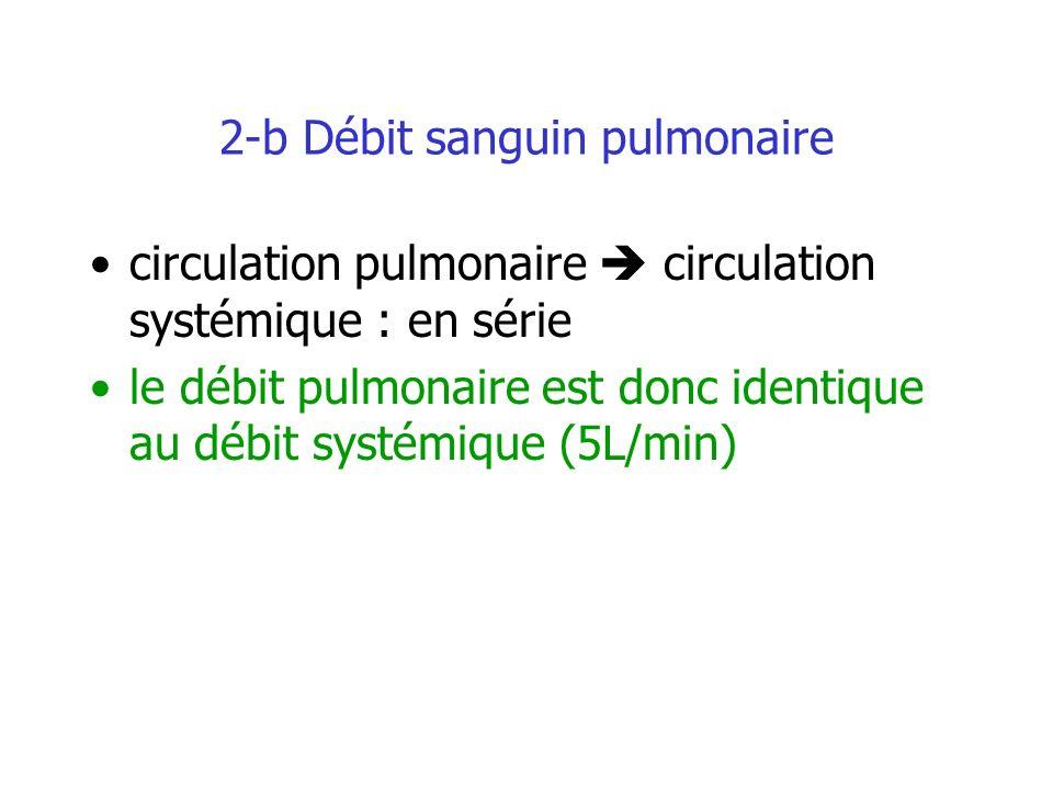 2-b Débit sanguin pulmonaire