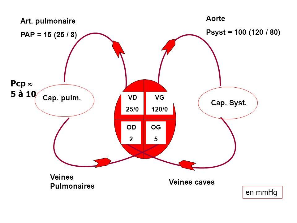 Pcp  5 à 10 Aorte Art. pulmonaire Psyst = 100 (120 / 80)