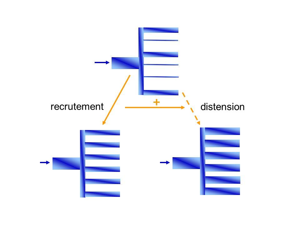 recrutement distension +