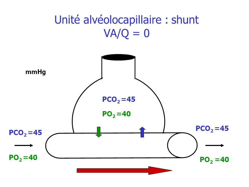 Unité alvéolocapillaire : shunt VA/Q = 0