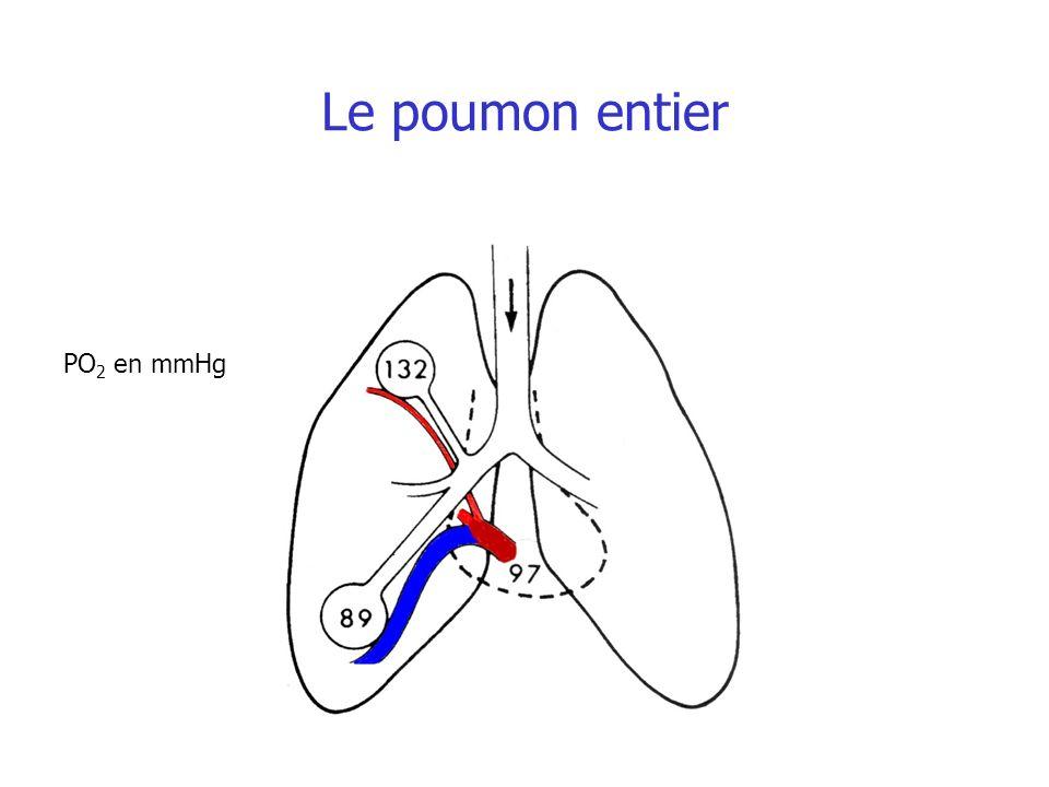 Le poumon entier PO2 en mmHg