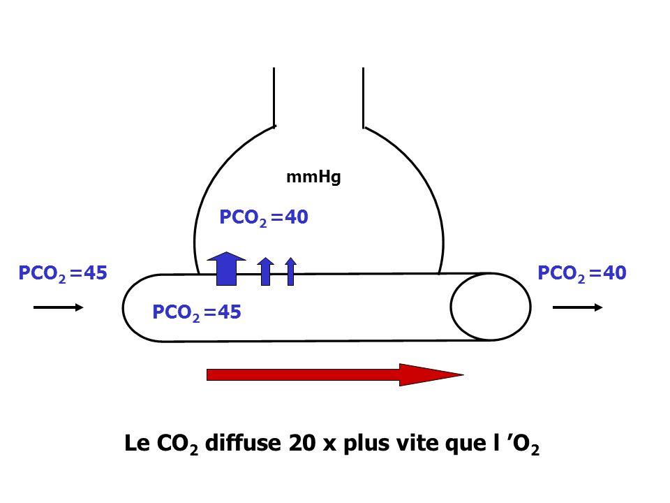 Le CO2 diffuse 20 x plus vite que l 'O2