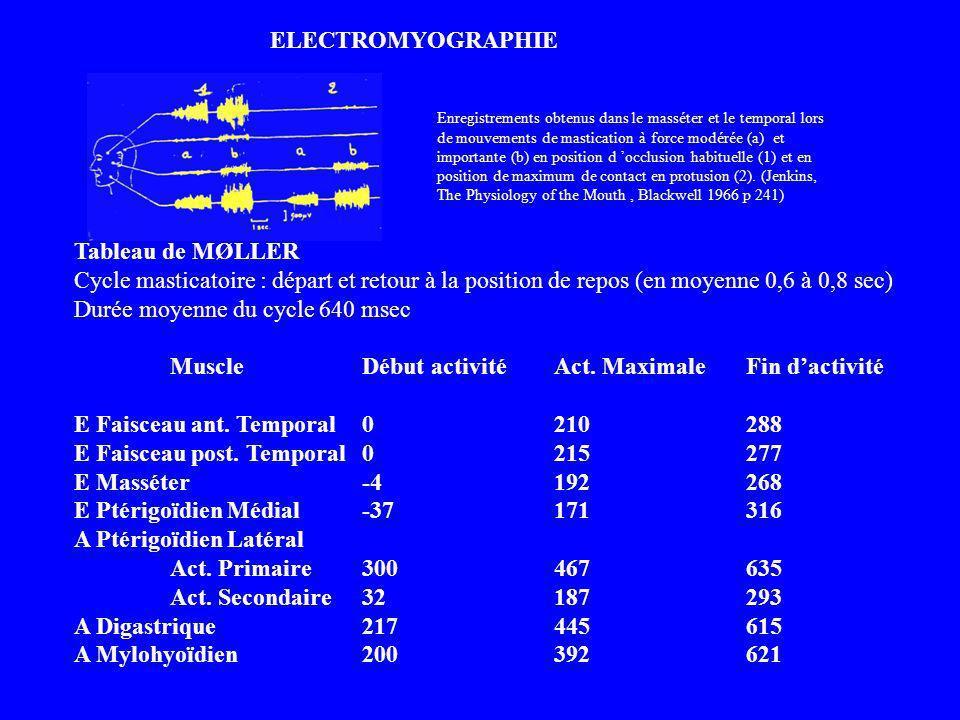 Durée moyenne du cycle 640 msec