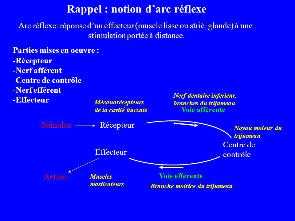 Rappel : notion d'arc réflexe
