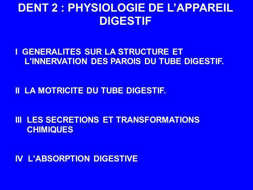 DENT 2 : PHYSIOLOGIE DE L'APPAREIL DIGESTIF