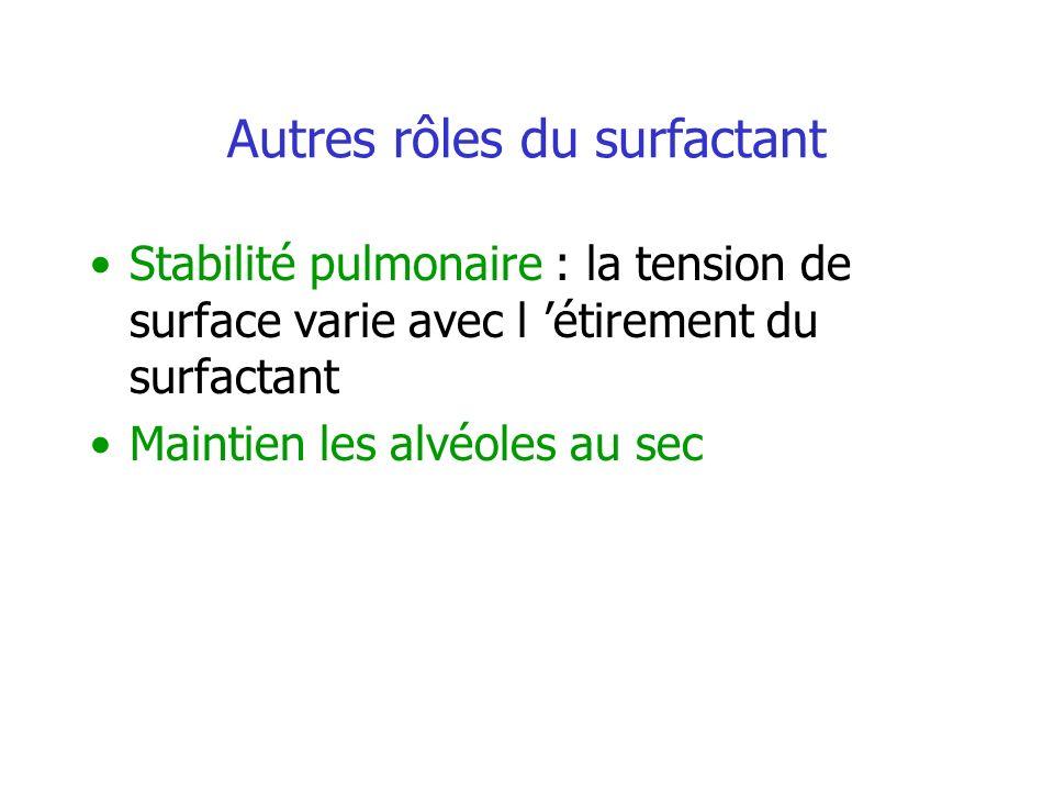 Autres rôles du surfactant
