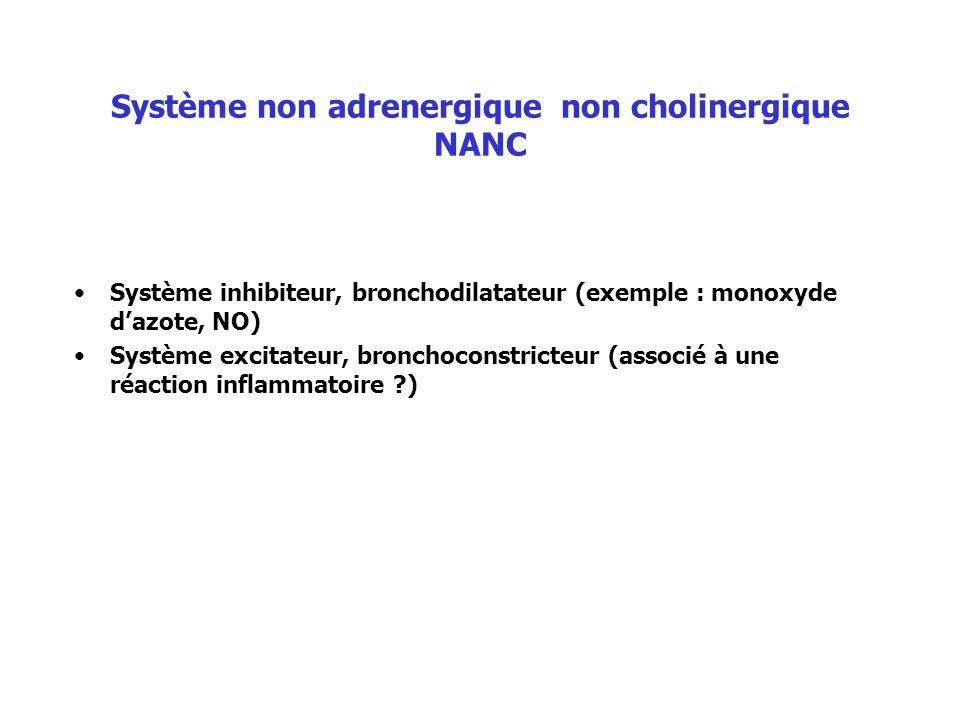 Système non adrenergique non cholinergique NANC
