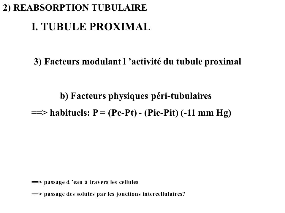 2) REABSORPTION TUBULAIRE I. TUBULE PROXIMAL