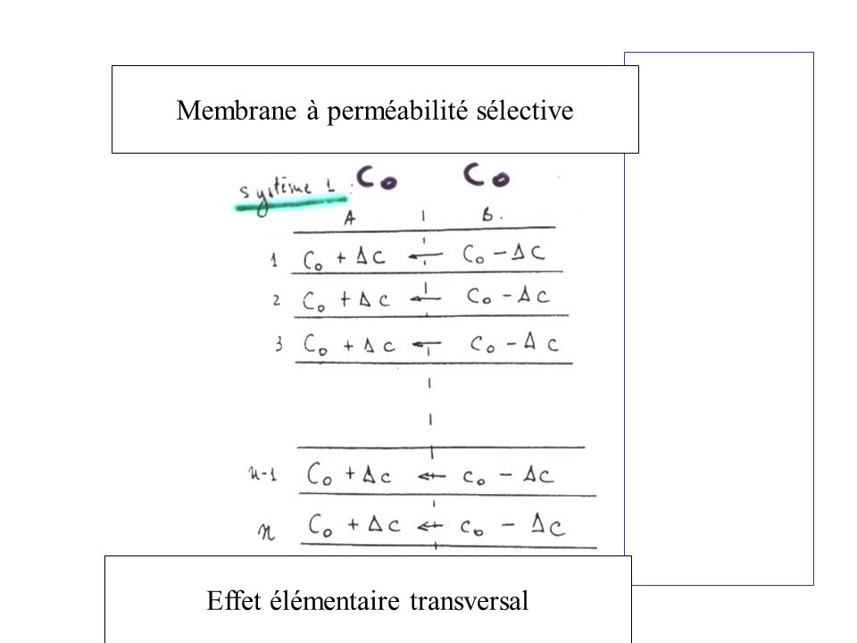 Membrane à perméabilité sélective