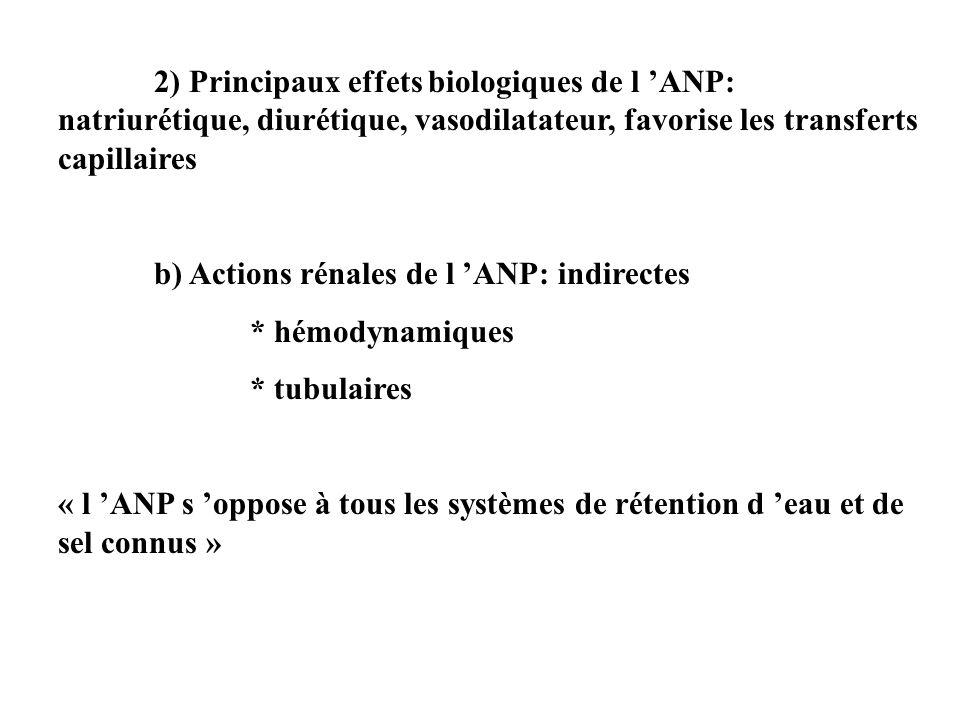 2) Principaux effets biologiques de l 'ANP: natriurétique, diurétique, vasodilatateur, favorise les transferts capillaires