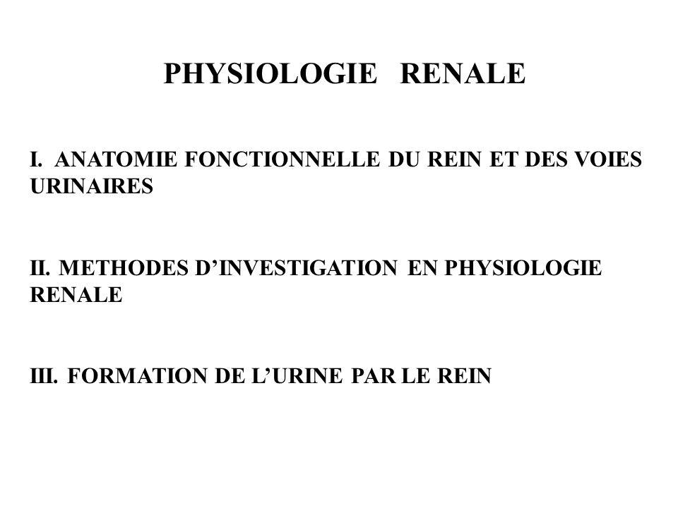 PHYSIOLOGIE RENALE I. ANATOMIE FONCTIONNELLE DU REIN ET DES VOIES URINAIRES. II. METHODES D'INVESTIGATION EN PHYSIOLOGIE RENALE.