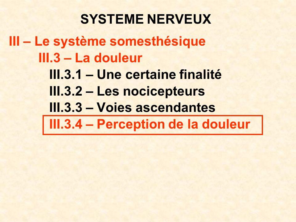 SYSTEME NERVEUX III – Le système somesthésique. III.3 – La douleur. III.3.1 – Une certaine finalité.