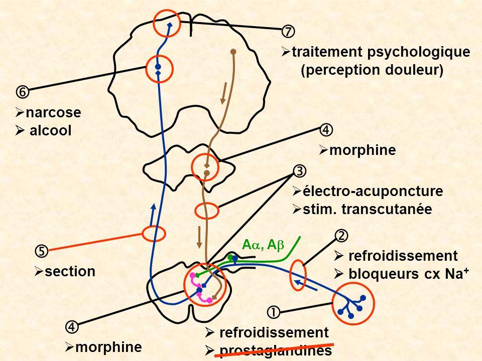         traitement psychologique (perception douleur) narcose