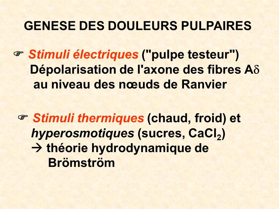 GENESE DES DOULEURS PULPAIRES