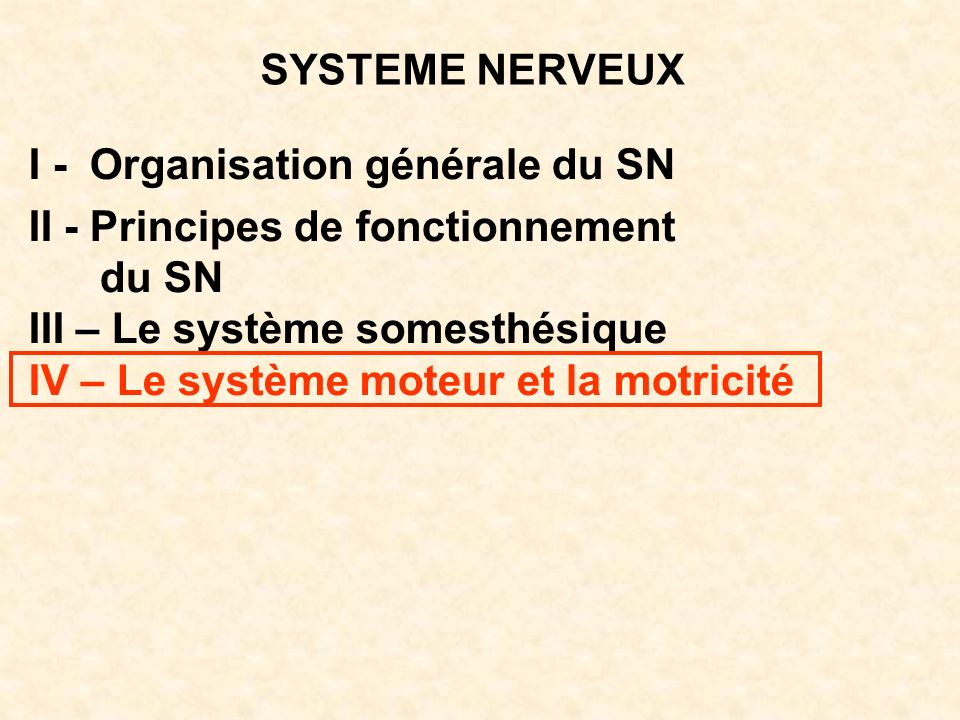 SYSTEME NERVEUX I - Organisation générale du SN. II - Principes de fonctionnement. du SN. III – Le système somesthésique.
