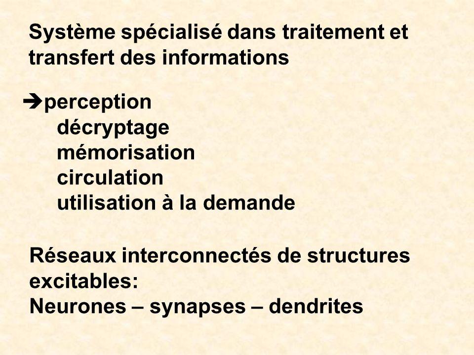 Système spécialisé dans traitement et transfert des informations