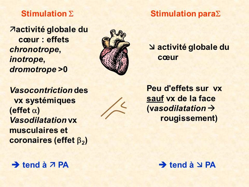 Stimulation S Stimulation paraS. activité globale du. cœur : effets chronotrope, inotrope, dromotrope >0.
