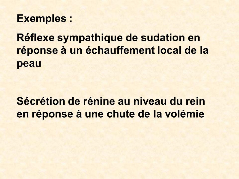 Exemples : Réflexe sympathique de sudation en réponse à un échauffement local de la peau.