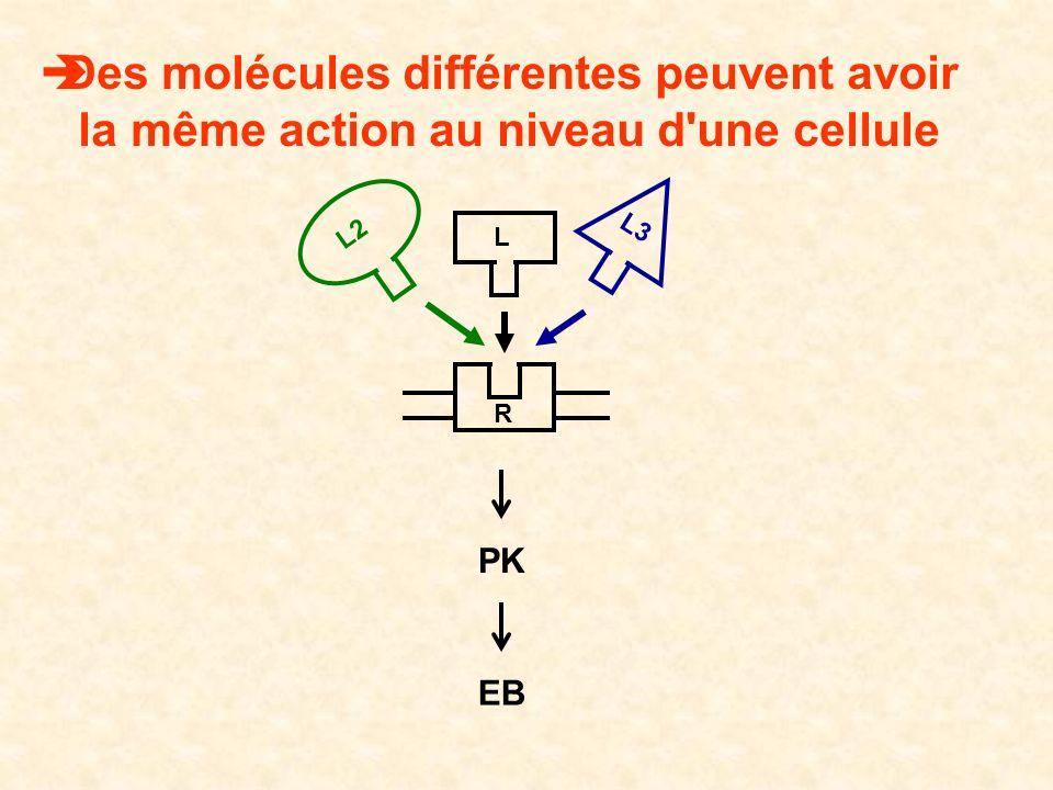 Des molécules différentes peuvent avoir