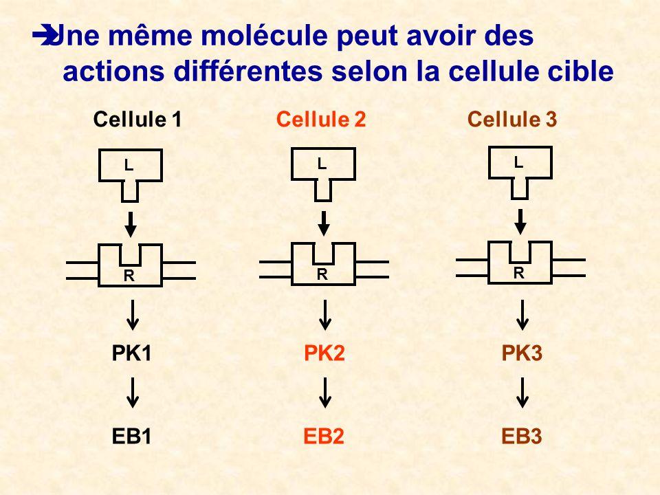Une même molécule peut avoir des