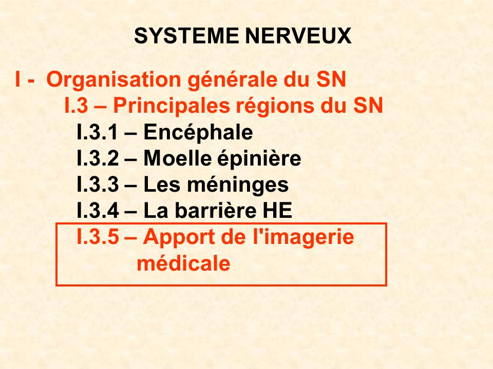 SYSTEME NERVEUX I - Organisation générale du SN. I.3 – Principales régions du SN. I.3.1 – Encéphale.