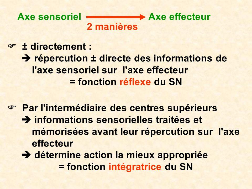 = fonction réflexe du SN = fonction intégratrice du SN