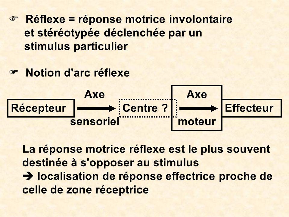 F Réflexe = réponse motrice involontaire