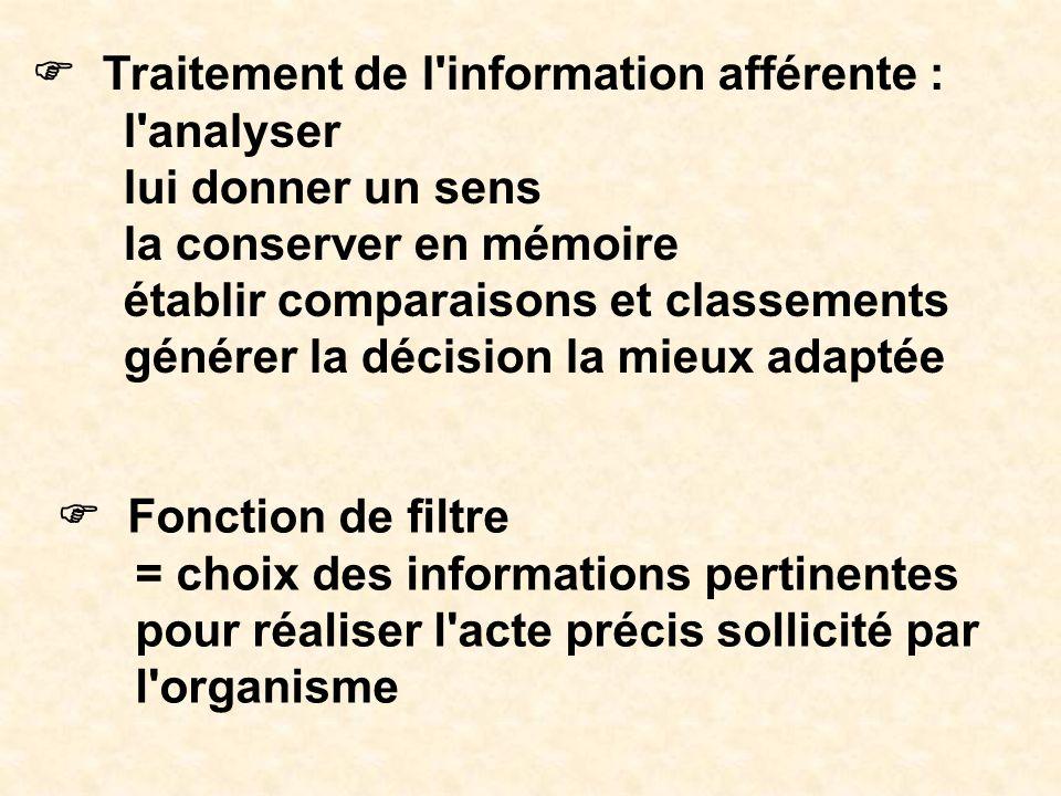 F Traitement de l information afférente :